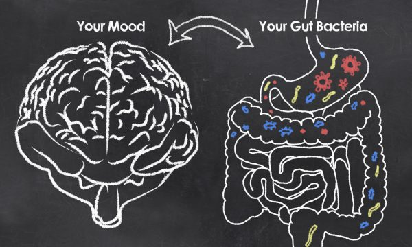 The Way To Brain Health Is Through Your Gut; Brain Foods To Add To Your Diet