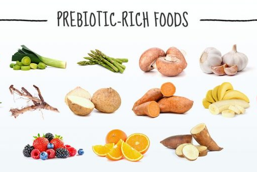 Image result for prebiotics