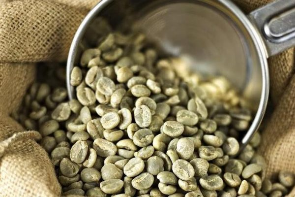 The Buzz Around Green Coffee Bean Extract; Does It Justify The Claims?