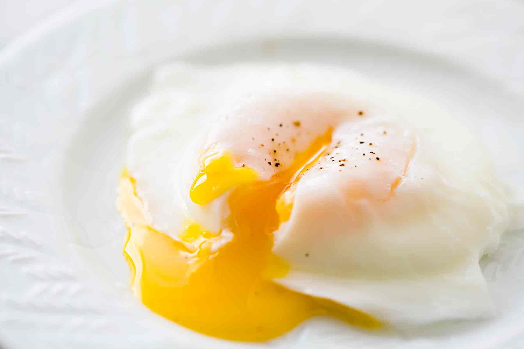 food poisoning from Eggs